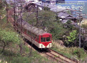 shimotsui01.jpg
